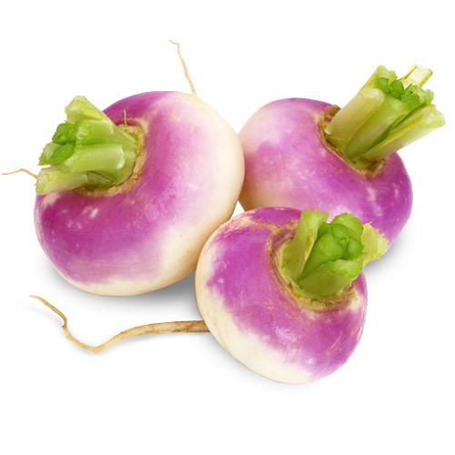 turnips round