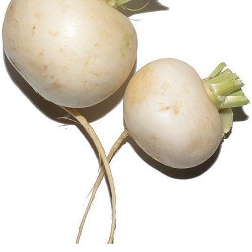 turnips white